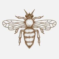 Desenho de mão de abelha vetor
