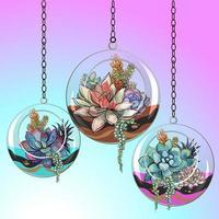 Suculentas flores em vasos de vidro. Vetor. vetor
