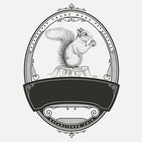 Design de emblema de esquilo vintage vetor