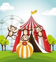 show de circo de macacos vetor