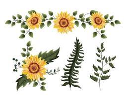 conjunto de plantas de girassóis exóticos com folhas de galhos