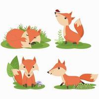 Conjunto de conjunto de caracteres de desenho animado fox bonito vetor