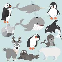 Coleção de desenhos animados de animais Artic vetor