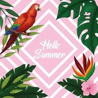Olá cartão cartaz verão vetor