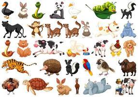 Grande conjunto de animais vetor