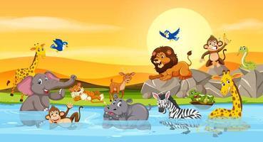 Animais selvagens no pôr do sol do rio vetor