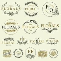 coleção de ornamento floral vetor