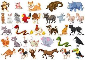 Conjunto diversificado de animais vetor