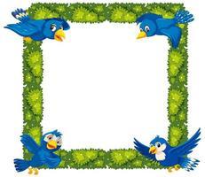 fronteira de plantas e pássaros