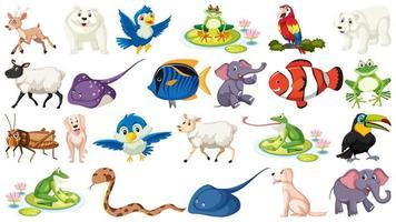 conjunto de desenhos animados iish e animais selvagens vetor