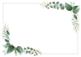quadro de retângulo botânico em aquarela vetor