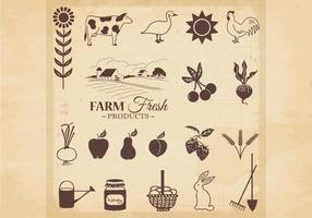 Vetor de produtos frescos de fazenda