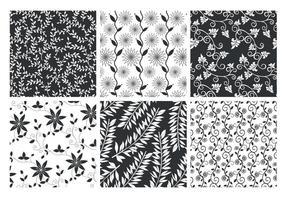 Conjunto de vetores com motivos florais padronizados