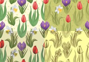 Padrões vetoriais de Tulip e Daffodil sem costura
