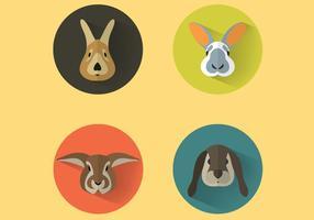 Vetor retratos de coelho