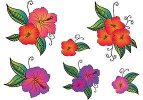 Flores Polinésias Vector Gratuitas