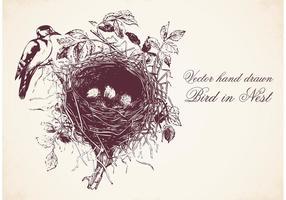Pássaro desenhado à mão livre no vetor de ninho
