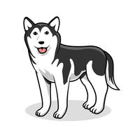 Cão Siberian Husky Vector
