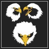 conjunto de cabeça de águia vetor
