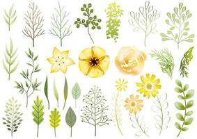 conjunto de elementos botânicos amarelos isolados vetor