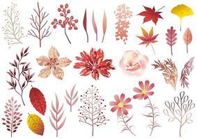 conjunto de elementos botânicos vermelhos vetor