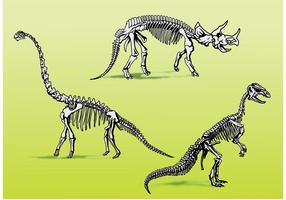 Esqueletos de ossos de dinossauro vetor
