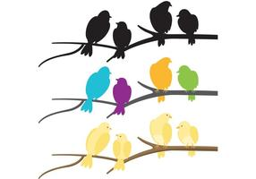 Rebanho Colorido De Vetores De Aves