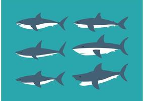 Coleção de tubarões vetor