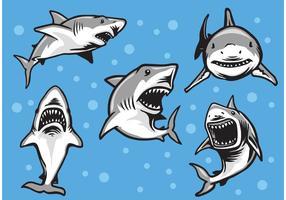 Grandes vetores de tubarão branco