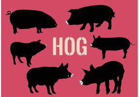 Coleção de porcos vetor