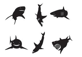 Silhuetas de grande tubarão branco vetor