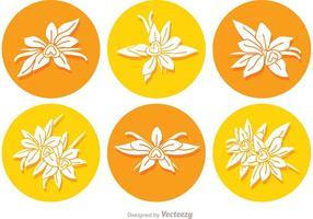 Vetores de ícones redondos de flor de baunilha