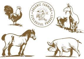 Pacote de vetores de animais de fazenda grátis