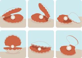 Vetores de concha de pérola