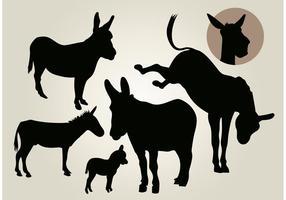 Conjunto de silhueta de vetor de burro