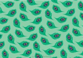 Vetor de padrão de pavão verde cauda