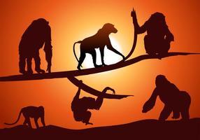 Conjunto de vetores de silhueta de macaco grátis