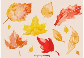 Folhas de outono de aquarela vetor