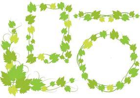 Desenhos de folhas de videira de hera vetor
