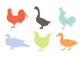 Silhuetas Variadas de Galos e Outros Poultries