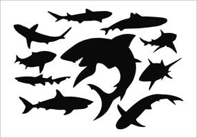 Conjunto de silhueta de tubarão vetor