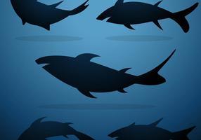 Vetor de conjunto de silhueta de tubarão