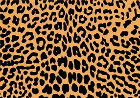 Vector de impressão Leopard grátis