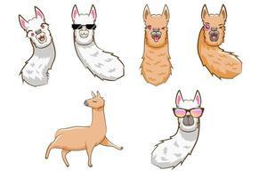 conjunto de desenhos animados de lhama vetor