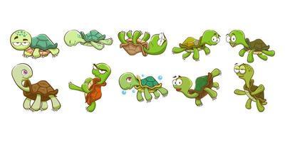conjunto de tartaruga dos desenhos animados vetor