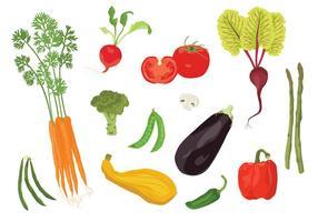 Vegetarian Veggies vetor