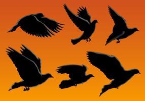 Vetores de aves silhueta voando