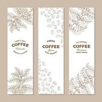conjunto de bandeiras de planta de café vetor