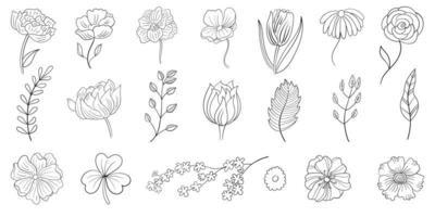 conjunto de flores de linha desenhada de mão vetor