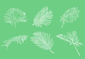 Jogo de vetor de folha de palmeira de rabisco